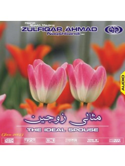 Misali Zaujain (The Ideal Spouse)